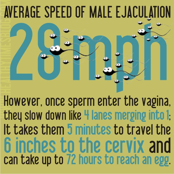 Fun-Sex-Facts-3